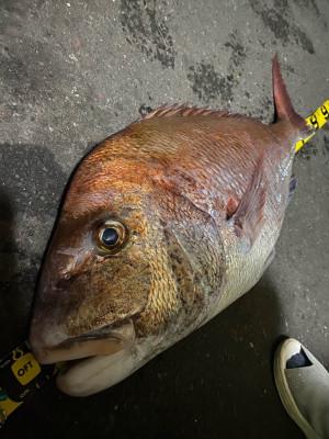 大春丸の2021年10月3日(日)3枚目の写真