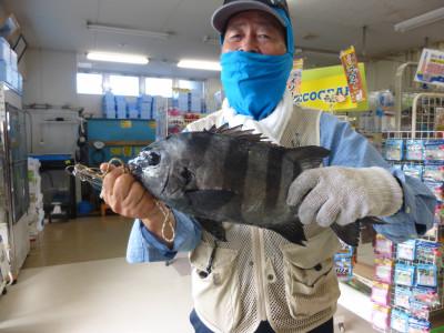 柴釣具商会の2021年10月3日(日)1枚目の写真