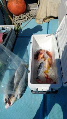 紀丸の2021年10月4日(月)2枚目の写真