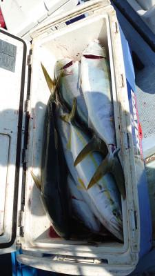 釣り船 秀進丸の2021年10月3日(日)2枚目の写真