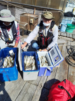 安乗釣センターの2021年10月6日(水)2枚目の写真