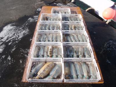 釣り船 久勝丸の2021年10月3日(日)4枚目の写真