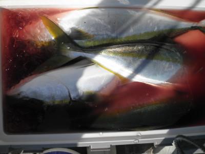 美咲丸の2021年10月8日(金)2枚目の写真