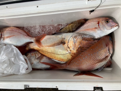 釣り船 黒潮丸の2021年10月10日(日)2枚目の写真