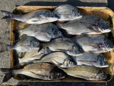 旅館 海の都 勢力丸の2021年10月13日(水)3枚目の写真