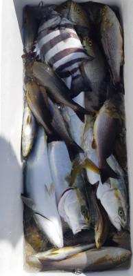 金寅丸の2021年10月15日(金)2枚目の写真