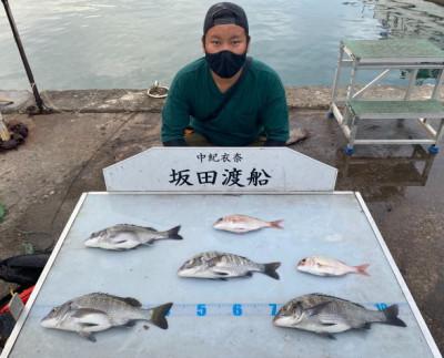 坂田渡船の2021年10月11日(月)3枚目の写真