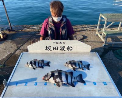 坂田渡船の2021年10月15日(金)3枚目の写真