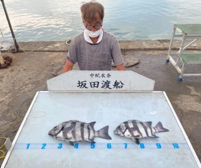 坂田渡船の2021年10月16日(土)4枚目の写真