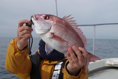松島シーネットの2021年10月25日(月)3枚目の写真