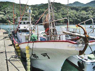 S.K Fishing