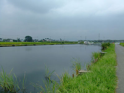 八重笠沼管理釣り場