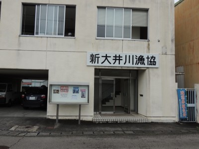 新大井川非出資漁業協同組合