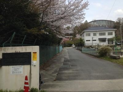 矢作川漁業協同組合