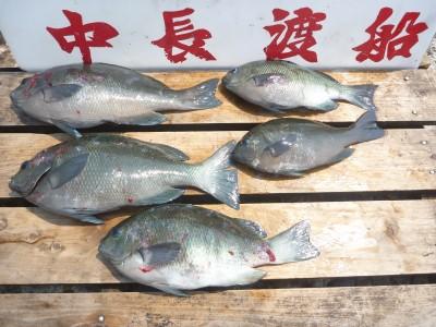 中長渡船の2018年7月18日(水)1枚目の写真