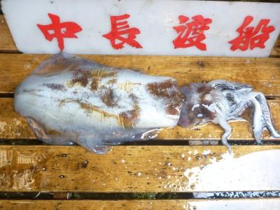 中長渡船の2018年7月18日(水)2枚目の写真
