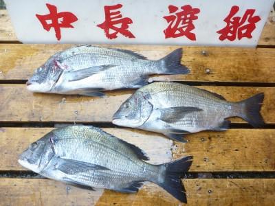 中長渡船の2018年7月19日(木)2枚目の写真
