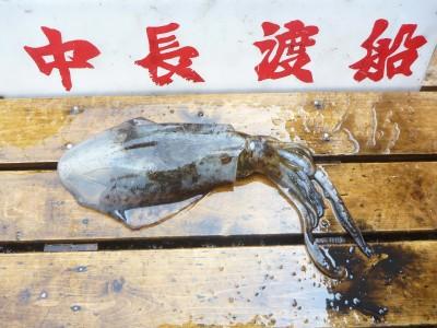 中長渡船の2018年7月19日(木)3枚目の写真