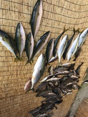 アラタニ釣具店の2018年7月19日(木)2枚目の写真