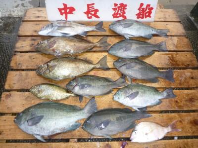 中長渡船の2018年7月20日(金)3枚目の写真