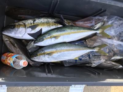アラタニ釣具店の2018年7月20日(金)5枚目の写真