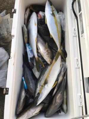 アラタニ釣具店の2018年7月21日(土)2枚目の写真