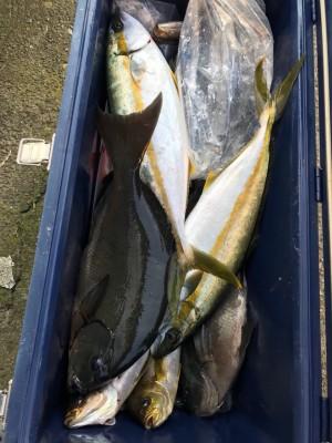 アラタニ釣具店の2018年7月21日(土)3枚目の写真