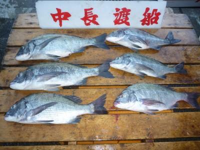 中長渡船の2018年7月22日(日)1枚目の写真