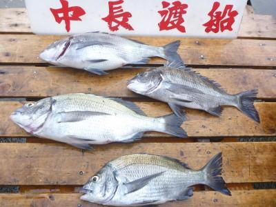 中長渡船の2018年7月25日(水)2枚目の写真