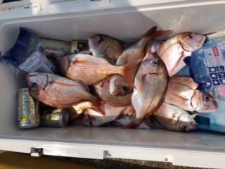 釣海丸(Fishing吹浦)の2018年8月5日(日)2枚目の写真