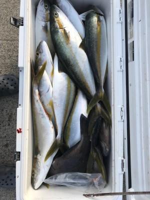 アラタニ釣具店の2018年8月11日(土)4枚目の写真