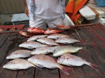 奥村釣船の2018年8月20日(月)2枚目の写真