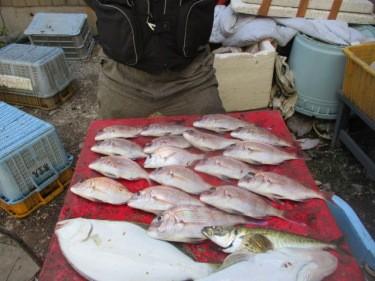 奥村釣船の2018年8月25日(土)2枚目の写真