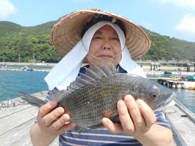 由良海つり公園&釣堀ランドの2018年8月29日(水)1枚目の写真