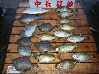 中長渡船の2018年9月19日(水)1枚目の写真