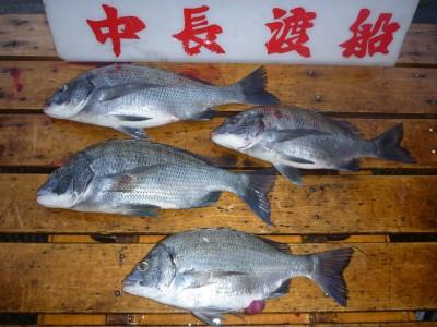 中長渡船の2018年9月19日(水)3枚目の写真