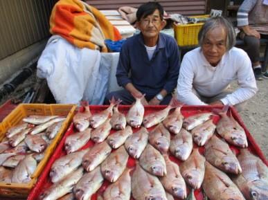 奥村釣船の2018年9月19日(水)3枚目の写真