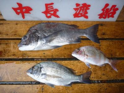 中長渡船の2018年9月20日(木)2枚目の写真