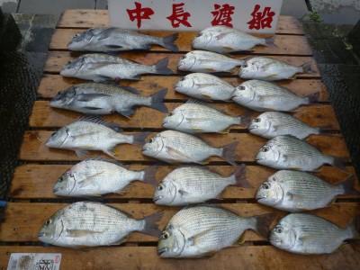 中長渡船の2018年9月21日(金)2枚目の写真