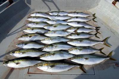 西岡遊漁の2018年9月25日(火)4枚目の写真