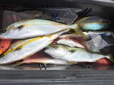 アラタニ釣具店の2018年10月5日(金)1枚目の写真