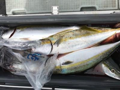 アラタニ釣具店の2018年10月5日(金)2枚目の写真