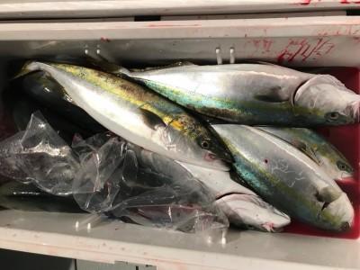 アラタニ釣具店の2018年10月16日(火)1枚目の写真