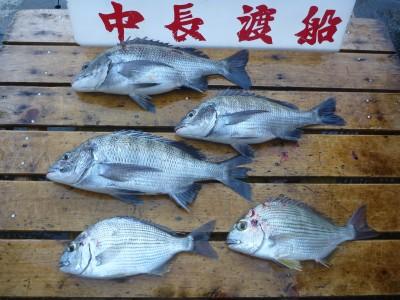 中長渡船の2018年10月18日(木)3枚目の写真