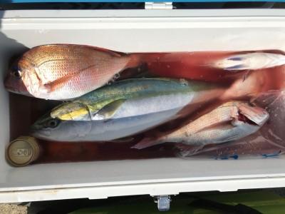 アラタニ釣具店の2018年10月21日(日)4枚目の写真