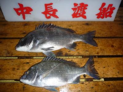 中長渡船の2018年10月22日(月)1枚目の写真