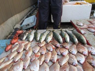 奥村釣船の2018年10月27日(土)3枚目の写真