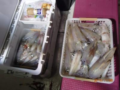 秀吉丸の2018年11月8日(木)4枚目の写真