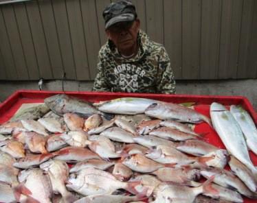 奥村釣船の2018年11月12日(月)4枚目の写真