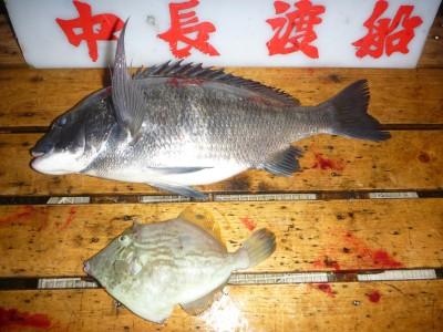 中長渡船の2018年11月16日(金)3枚目の写真